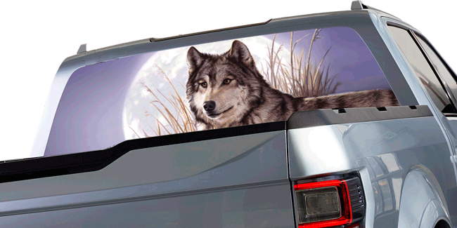 Home - Rear window decals for vehicles